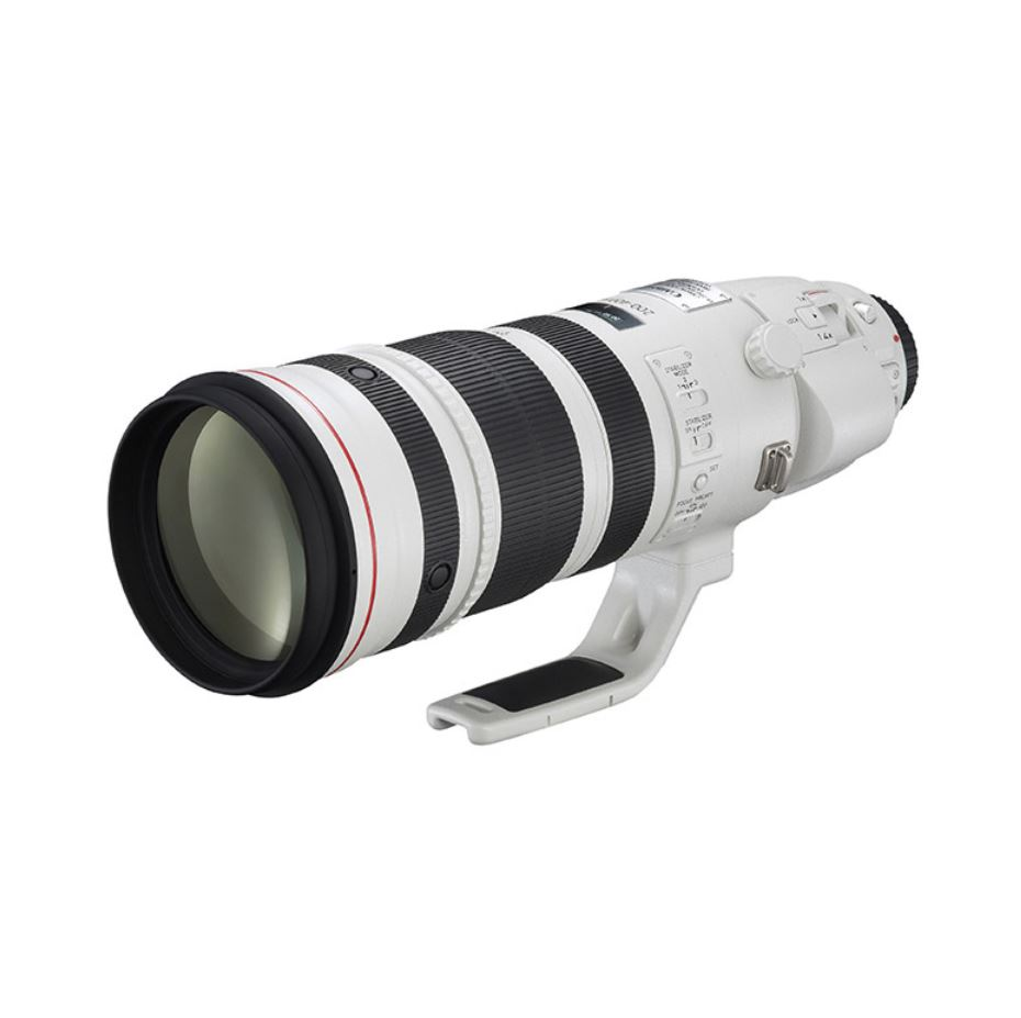 CANON EF 200-400MM F4.0L IS USM + EXT 1.4X